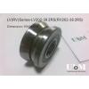 滚轮LV202-39 RV202/15.39-15 C210SP轴承